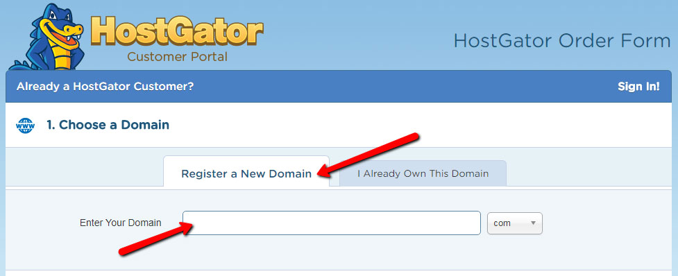 Step 2 - enter your domain or choose new domain