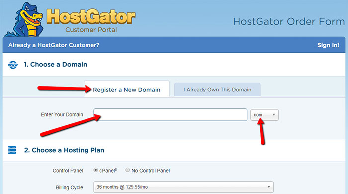Step 2: choosing domain name and duration for vps plan