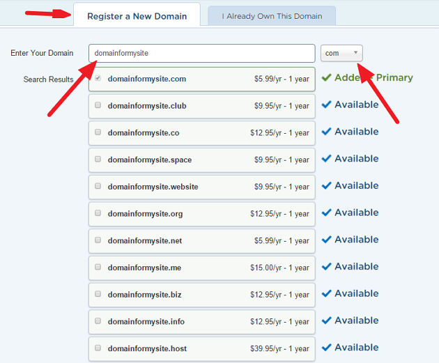Register your domain - Step 3